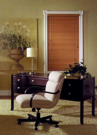 Adjustable Interior Window Blinds