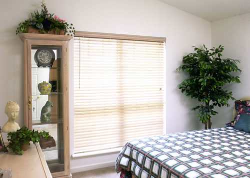 Residential Privacy Window Blinds