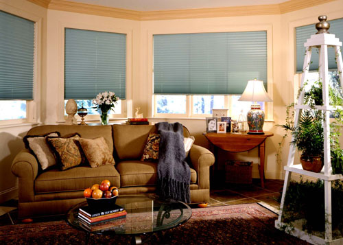Affordable Window Shades