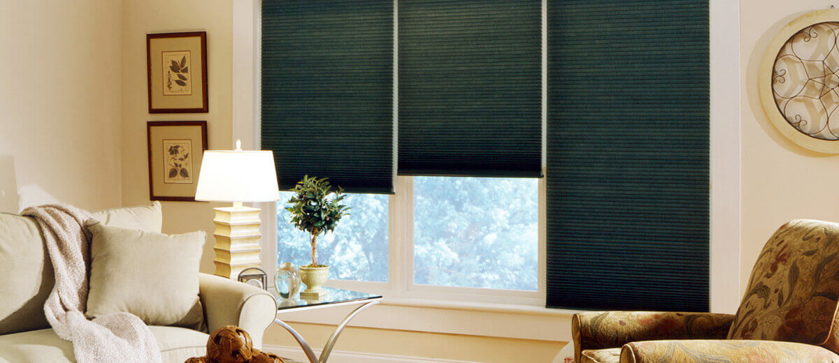 Window Covering Pleated Shades